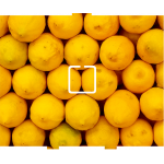 Lemons - 1 On/Off