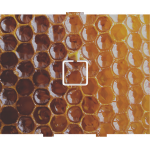 Honeycomb - 1 On/Off
